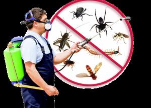 أحدث طريقة رش مبيدات