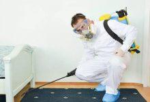 Photo of شركة رش مبيدات في الرياض